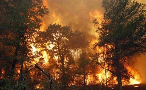 Пожары в сибири