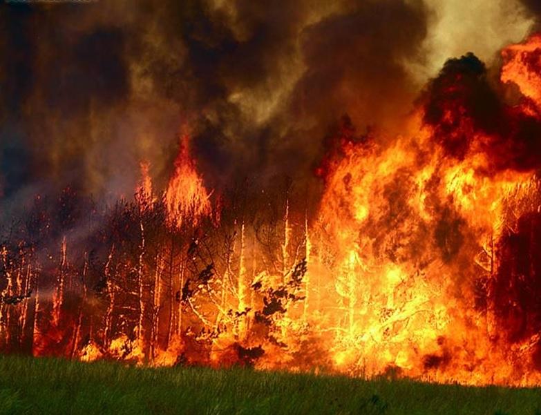 пожар забайлья