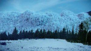ледяная зона 2017