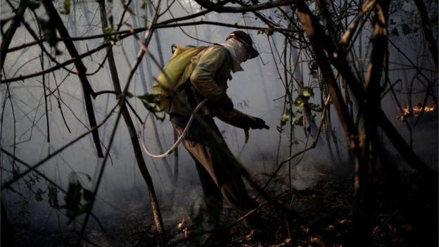 Бразильский национальный парк горит