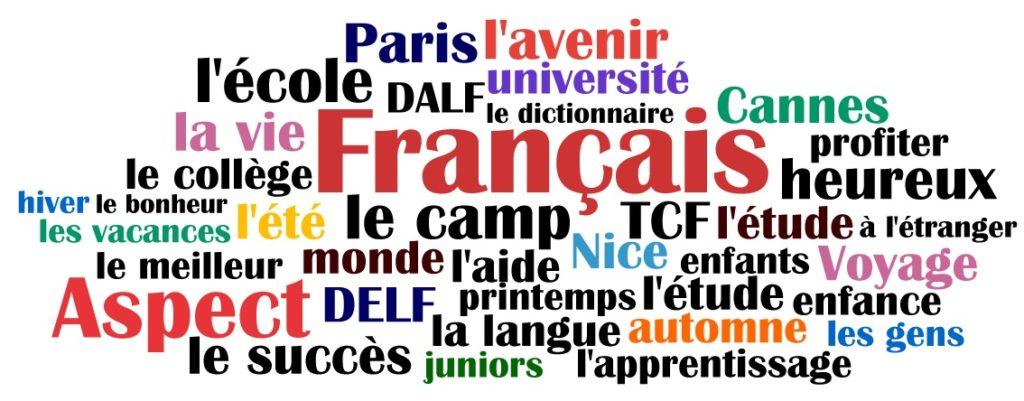 Олимпиады по французскому языку, как инструмент провести отбор наиболее способной молодежи