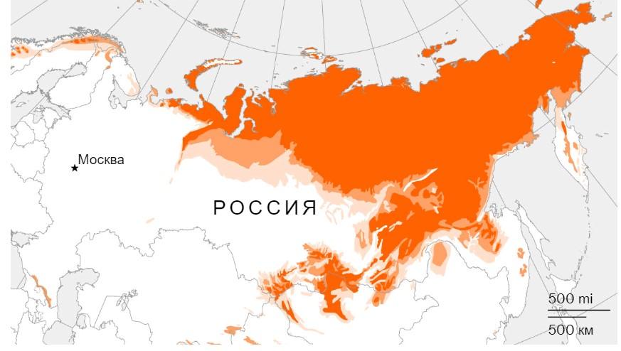 Ущерб России от таяния вечной мерзлоты оценили в $2,3 миллиардов