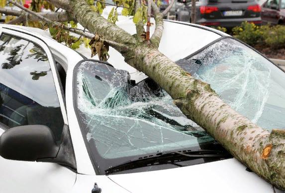Смертельно опасный ураган Сиара